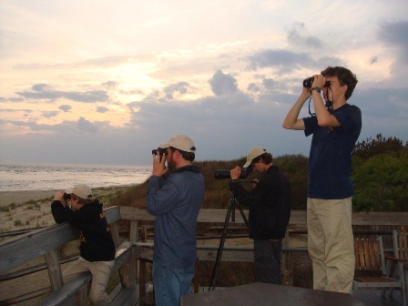 Seawatching at Cape May Point