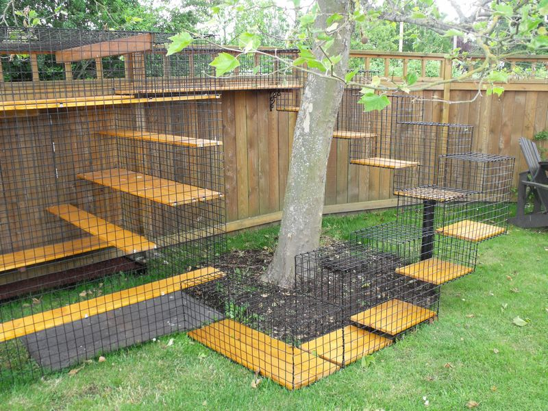 more popular and provide a safe--for both cats and wildlife--outdoor ...