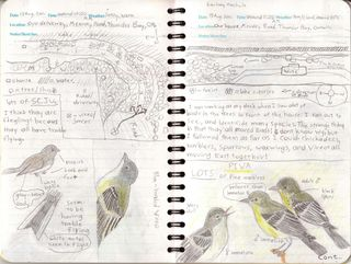 Pages from Zachary M Field 2011