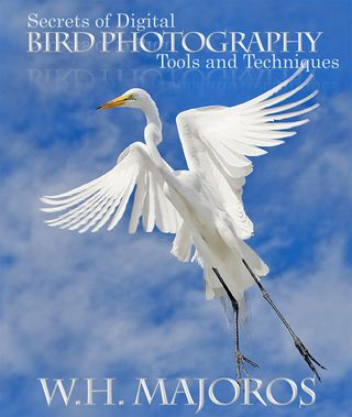 SecretsOfDigitalBirdPhotography