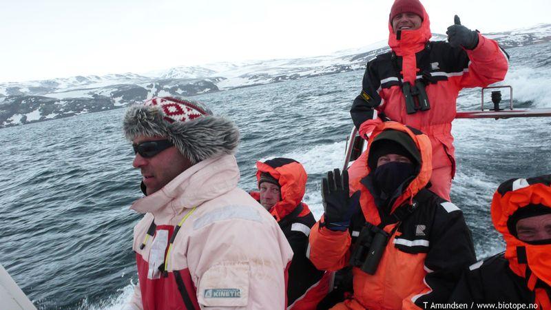 Blue fulmar pelagic with Arctic Tourist -TAmundsen Biotope
