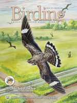 Birding Jan-Feb cover