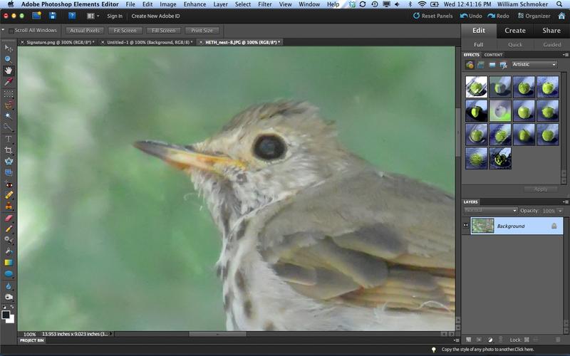 Screen Shot 2012-10-03 at 12.41.13 PM