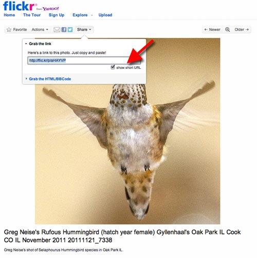 Flickr_short_url