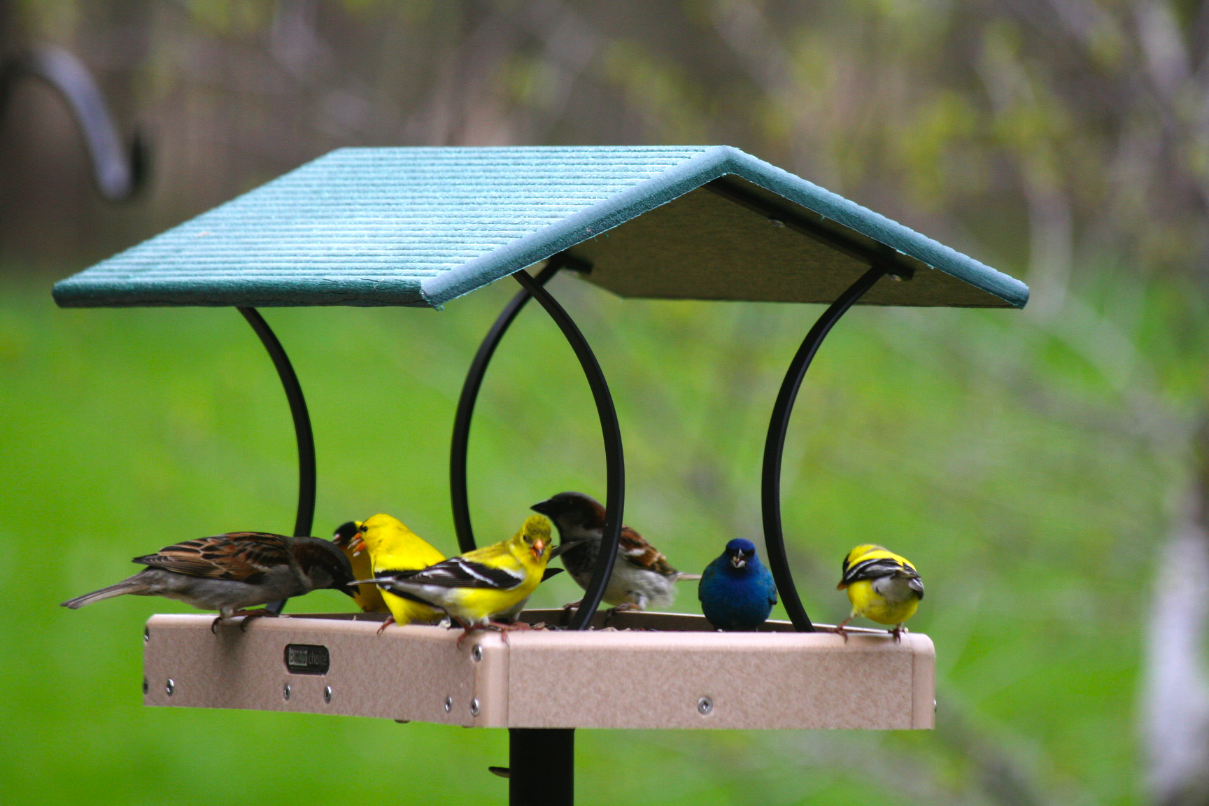 feeders stock open bird hand photo feeder boxes at and wooden france air made fair