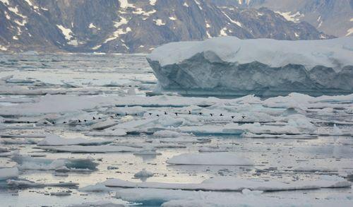 COEIs_Ice_Skjoldungensund-6lr