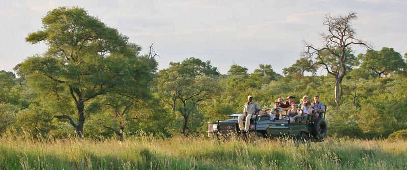 On safari by Leon Fouche-001 X